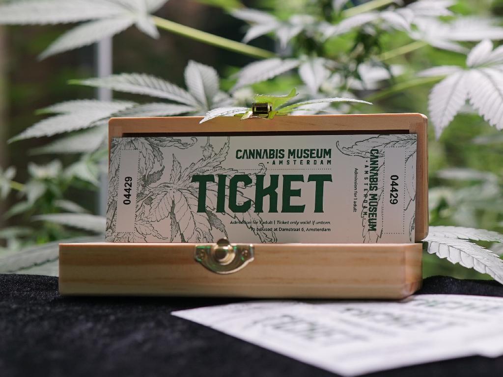 Cannabis Museum Amsterdam Ticket